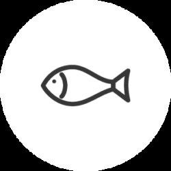 CW FISH