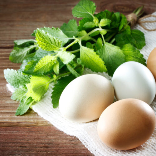 Eggs,On,A,Rustic,Table,Of,Wood,With,A,Sprig