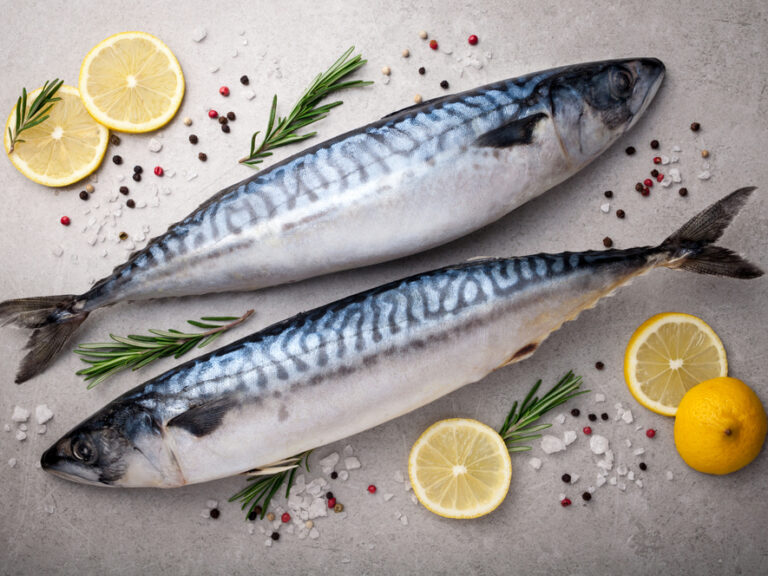 Fresh,Fish.,Mackerel,With,Salt,,Lemon,And,Spices,On,Gray